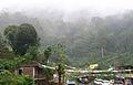 Munnar - views from Munnar (42).jpg