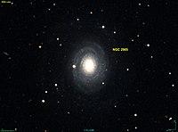 NGC 2985 DSS.jpg