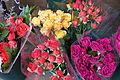 NYC - Roses - 0231.jpg