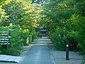 Nashinoki-jinja-012.jpg