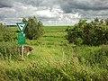 Naturschutzgebiet östlich des Schwelteich von Echzell - panoramio.jpg