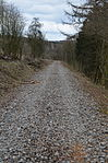 Nebenbahn Finnentrop-Wenholthausen (6920673936).jpg