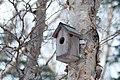 Nesting Box (181545903).jpeg