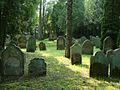 Neudenau-judenfriedhof1.jpg