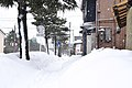 Niigata Prefecture in winter, Japan; February 2018 (33).jpg
