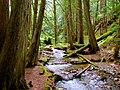 North Cascades National Park (9292794148).jpg