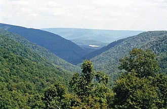 Blue Knob (Pennsylvania) - Looking down the Big Lick Branch drainage from the upper slopes of Blue Knob