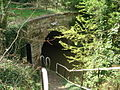 Northern entrance to Dunhampstead Tunnel - geograph.org.uk - 466807.jpg