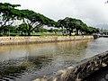 Nuuanu Stream and Aala Park.jpg