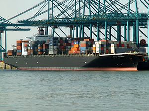 Nyk Antares, at the Amazone harbour, Port of Rotterdam, Holland 13-Sep-2005.jpg