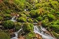 Oberried (Breisgau) - Buselbach-Wasserfall III.jpg
