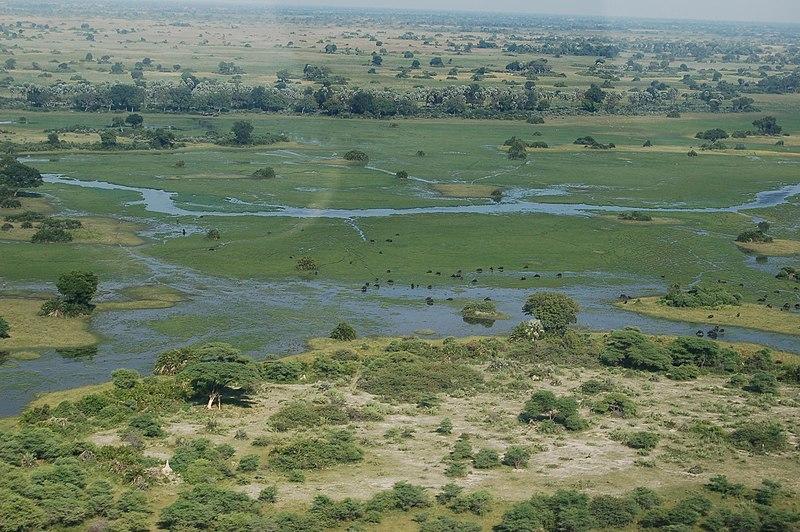 В Ботсване нашли третий по величине в мире алмаз весом 1098 карат