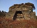 Old Lime Kiln - geograph.org.uk - 712609.jpg