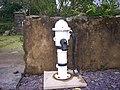 One of the pumps at Mountain Chapel Gardens, Llanteg - geograph.org.uk - 991460.jpg