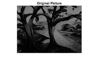 Homomorphic filtering - Figure 1: Original image: trees.tif