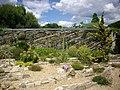 Orléans - jardin des plantes (37).jpg