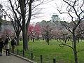 Osaka Castle Bairin1.jpg