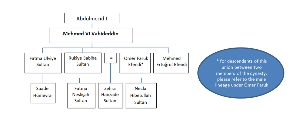 Family tree of the branch of the Ottoman Dynasty descending from Mehmed IV Vahiddeddin