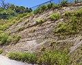 Outcrop in Senaga Island.jpg