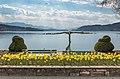 Pörtschach Johannes-Brahms-Promenade Blumenstrand Narzissenbeet 11042020 8707.jpg