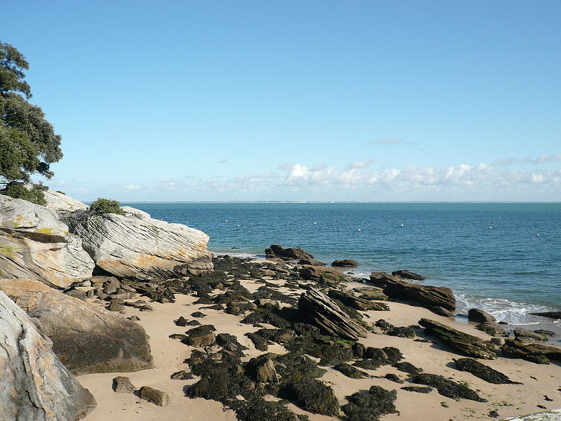 File:P1080093 Cote rocheuse sur la plage des Dames de Noirmoutier et vue sur le continent.JPG