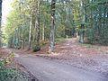 PaasberglaanopgangPaasberg2007.jpg