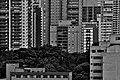 Paisagem em contraste (Cityscape contrast) (8682588814).jpg