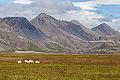 Paisaje cerca de Laugarvatn, Suðurland, Islandia, 2014-08-16, DD 076.JPG
