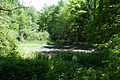 Památník J.Žižky (Trocnov) - Grandlový rybník.jpg