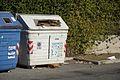 Paper dumpster Roman.JPG