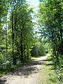Parc-nature du Bois-de-l-ile-Bizard 04.jpg