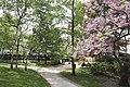 Parc du Docteur Victor-Roy (de l'Hôtel de Ville).jpg