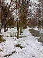 Park iran - panoramio.jpg