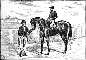 Parole (horse) - Image: Parole (horse)