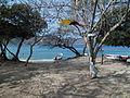 Parque natural nacional tayrona, santa martha.JPG