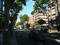 Passeig de la Bonanova P1450114.JPG