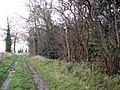 Passing an unnamed woodland - geograph.org.uk - 1060405.jpg