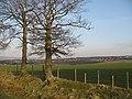 Pasture by Armadale - geograph.org.uk - 1211019.jpg
