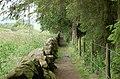 Path - geograph.org.uk - 481833.jpg