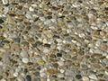 Pea gravel.JPG