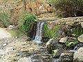 PikiWiki 34275 Ein Maboa in Wadi Qelt.jpg