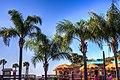 Pine Island Beach, Hernando County, Florida - panoramio (2).jpg