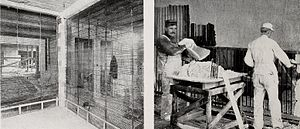 Hy-Rib - Plastering walls with Hy-Rib