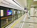 Platform of Xipu Station1.jpg