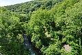 Plymbridge Woods south of Cann Viaduct (0139).jpg