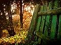 Podvečer za ohradou - panoramio.jpg