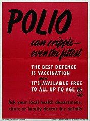 Polio poster.jpg