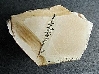 Porcellanite