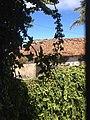 Porto Moniz, Portugal - panoramio (5).jpg