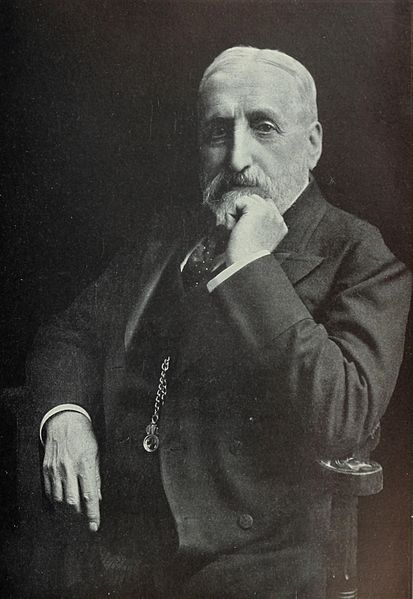 File:Portrait of Donald Mackenzie Wallace.jpg